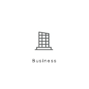 PlugnPay for Business